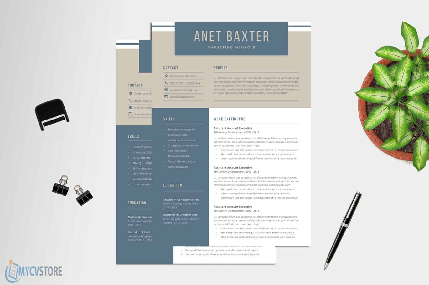 Professional-CV-Template011