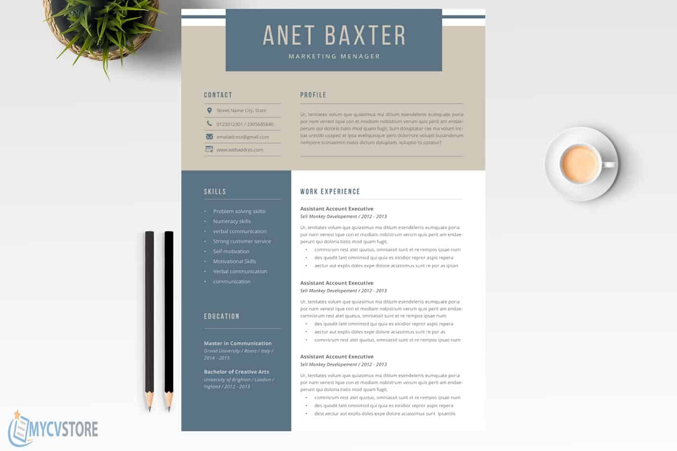 Professional-CV-Template021