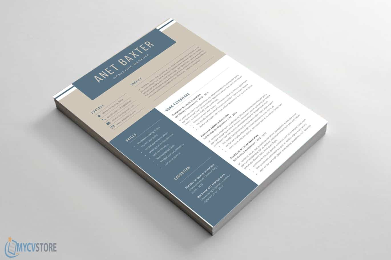 Professional-CV-Template031