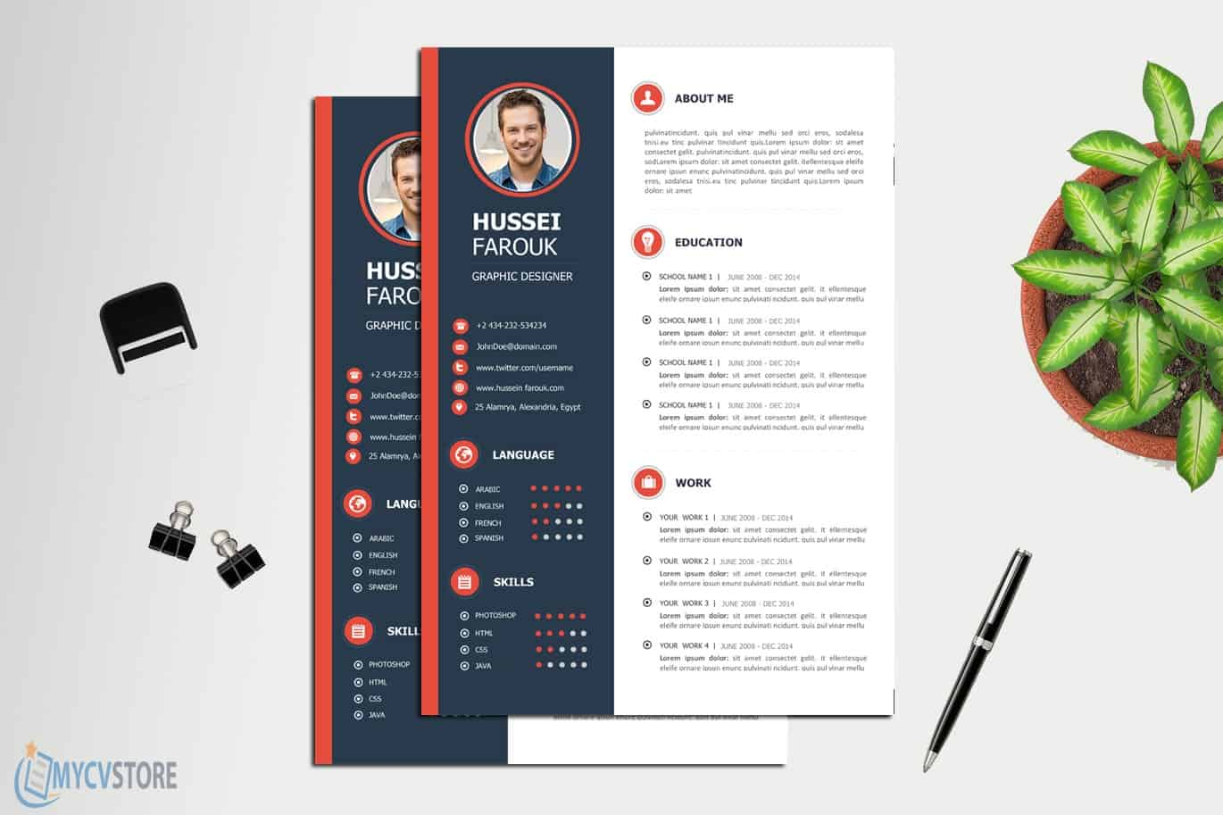 Professional-CV-Template1-3