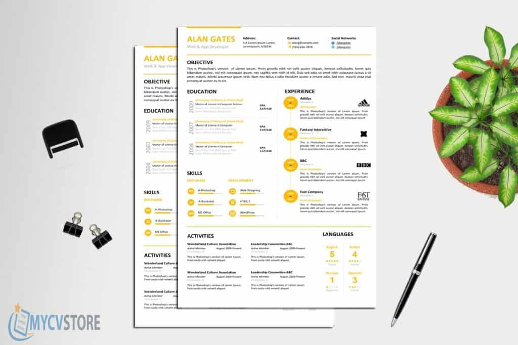 Clean Developer Resume Template