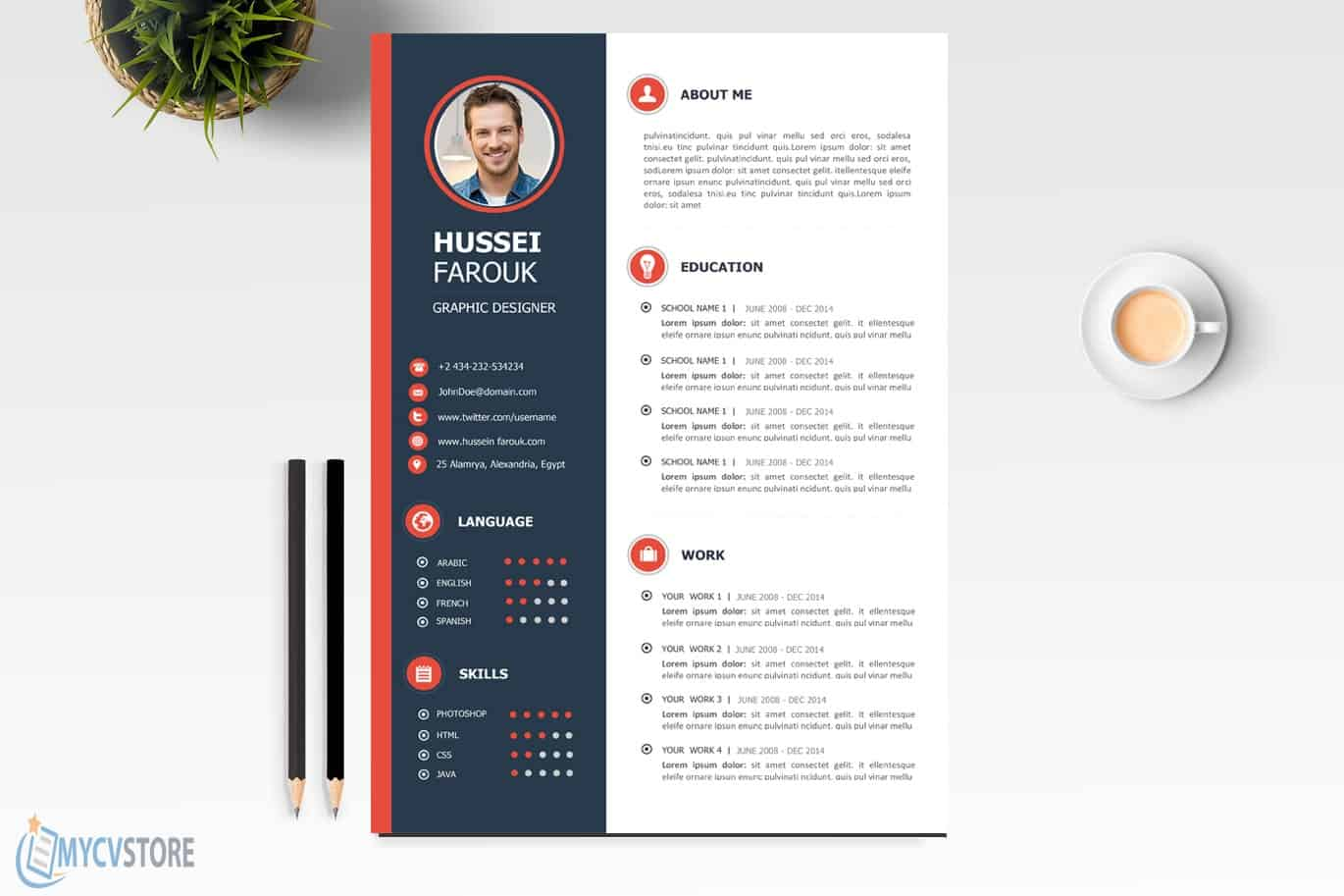 Professional-CV-Template2-3