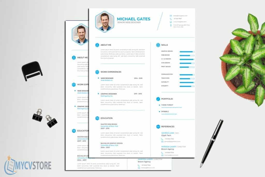 professional-cv-resume1-1024x682