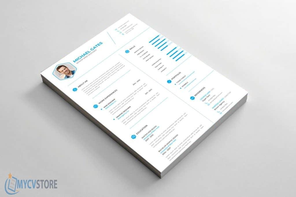 professional-cv-resume3-1024x682