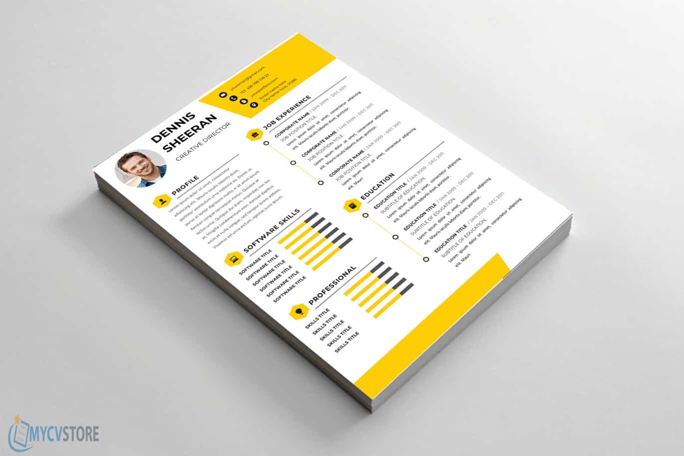 Creative Director Resume Template
