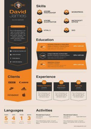 Marketing Consultant Resume template