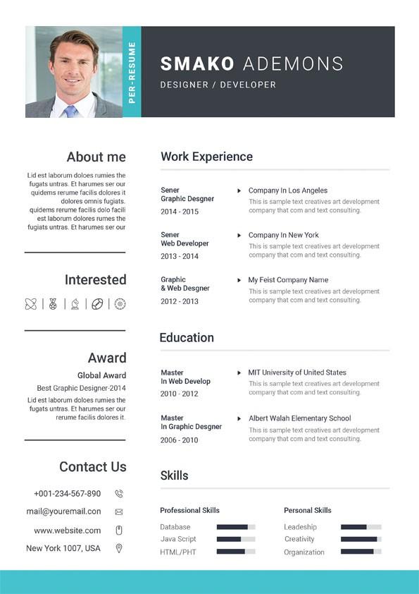 Professional Web Designer Resume