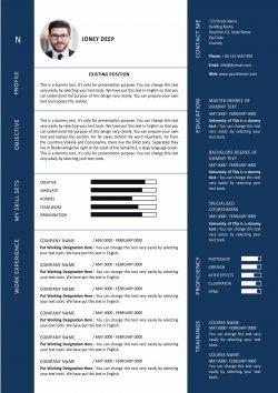 Modern Graphic Designer resume template