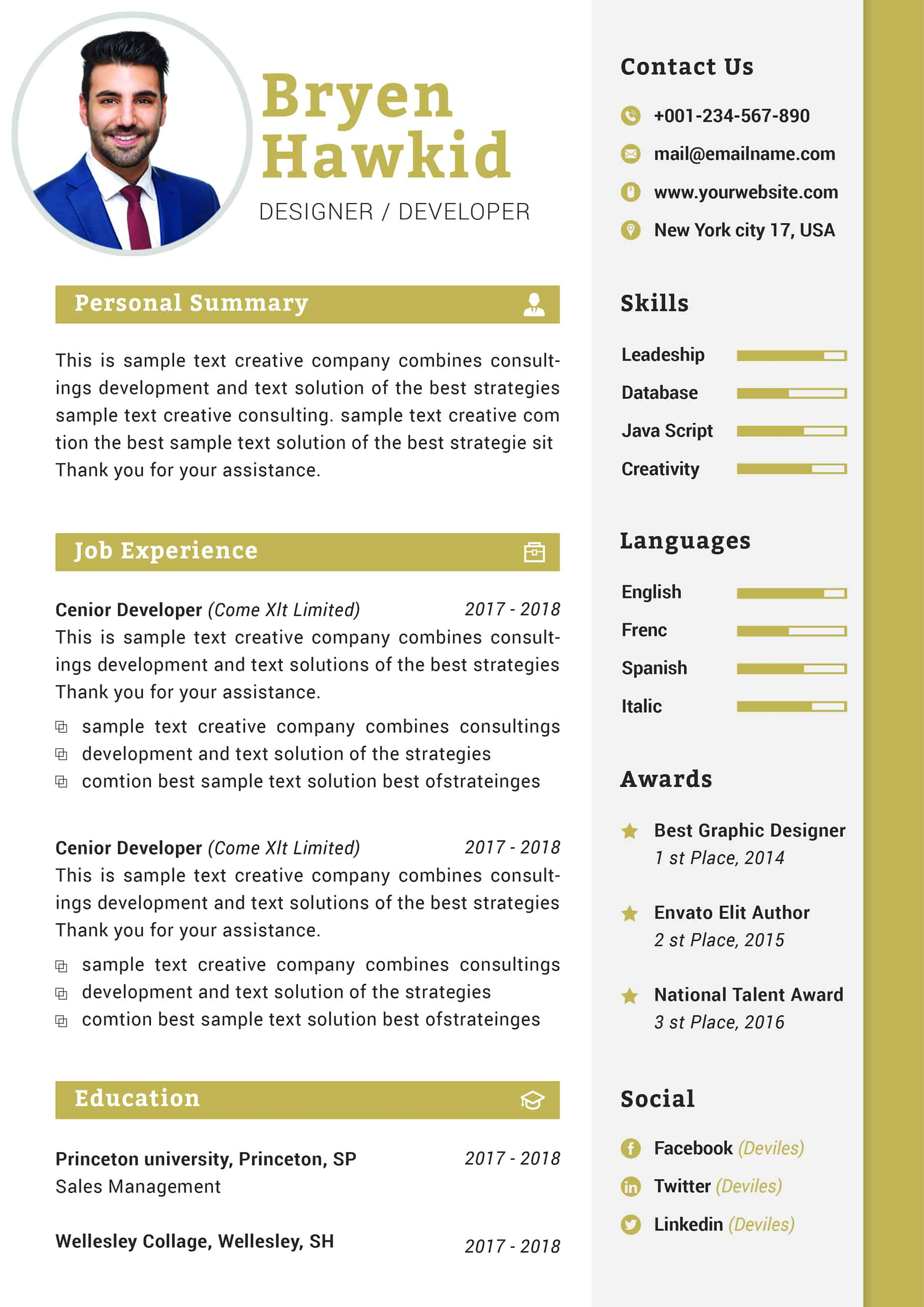 modern design manager cv template