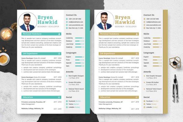 Senior Designer CV