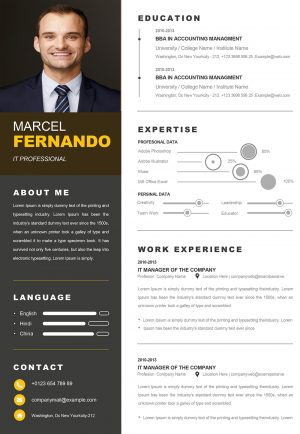 Professional Web Developer Resume