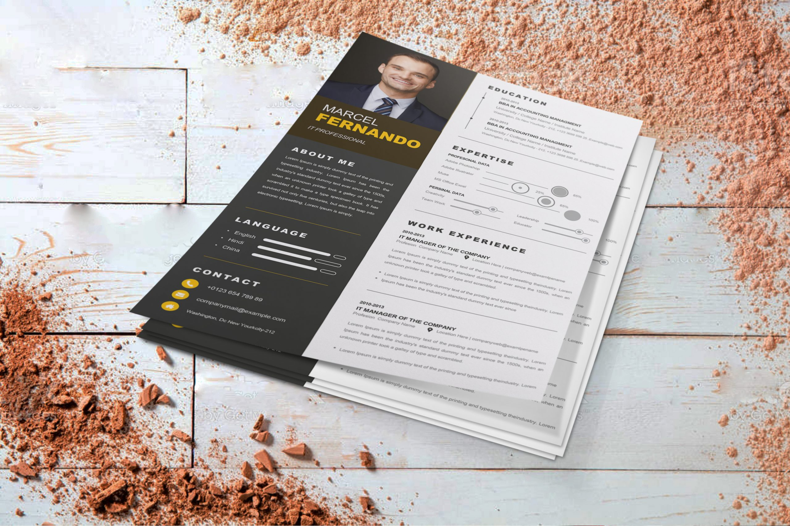 Professional-Web-Developer-Resume-Template-2
