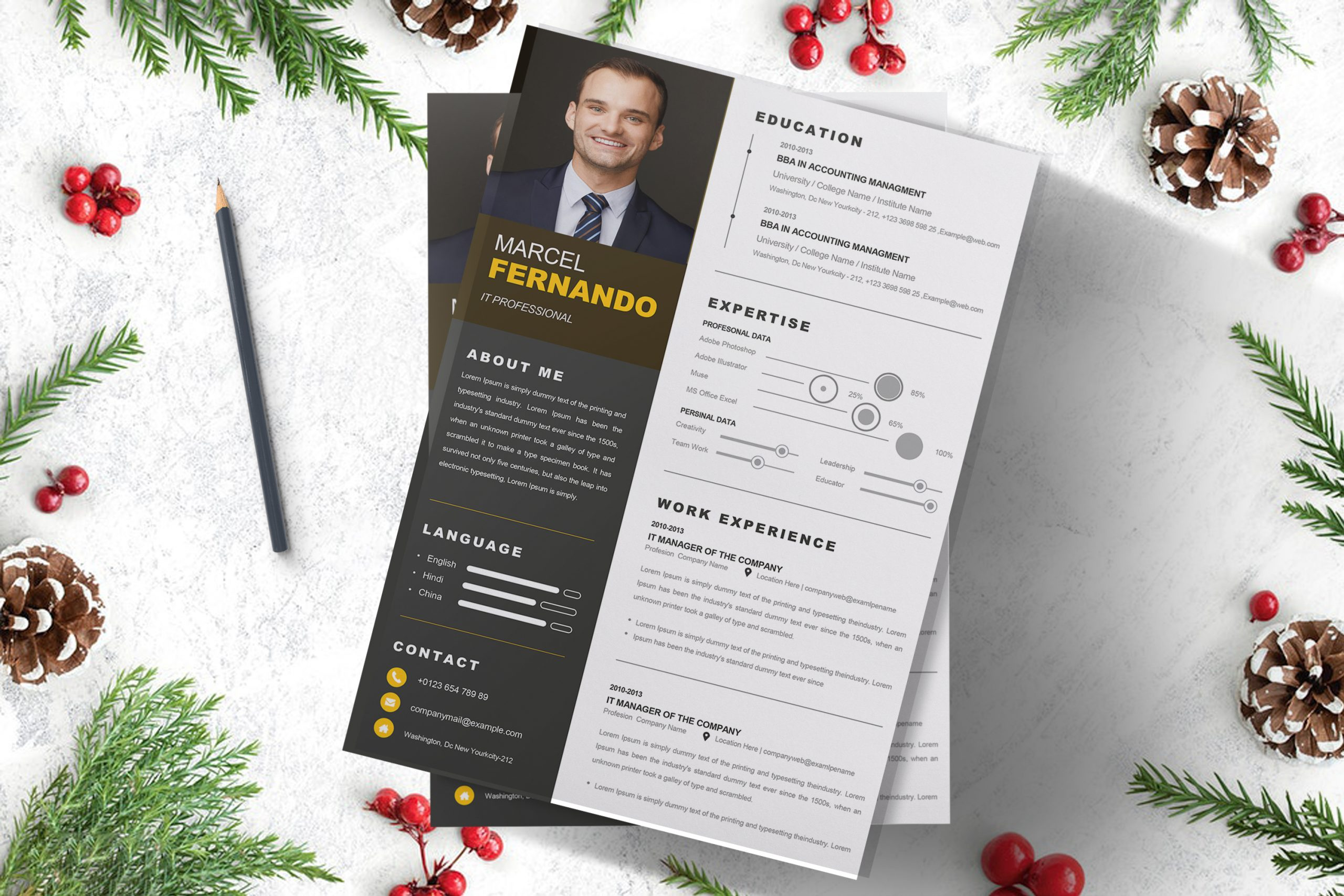 Professional-Web-Developer-Resume-Template-3