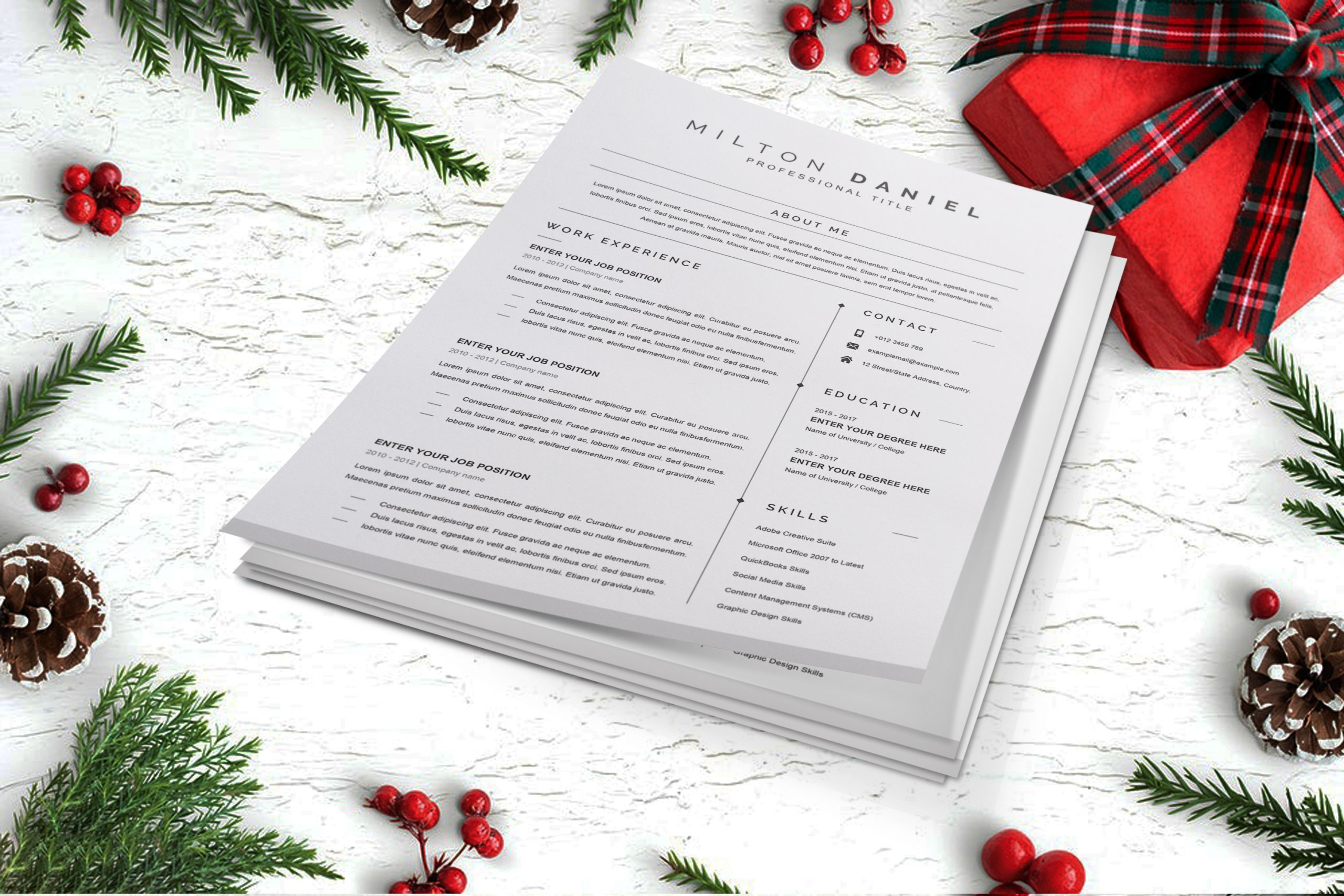 Professional-Word-CV-Template-in-Word-Format-3