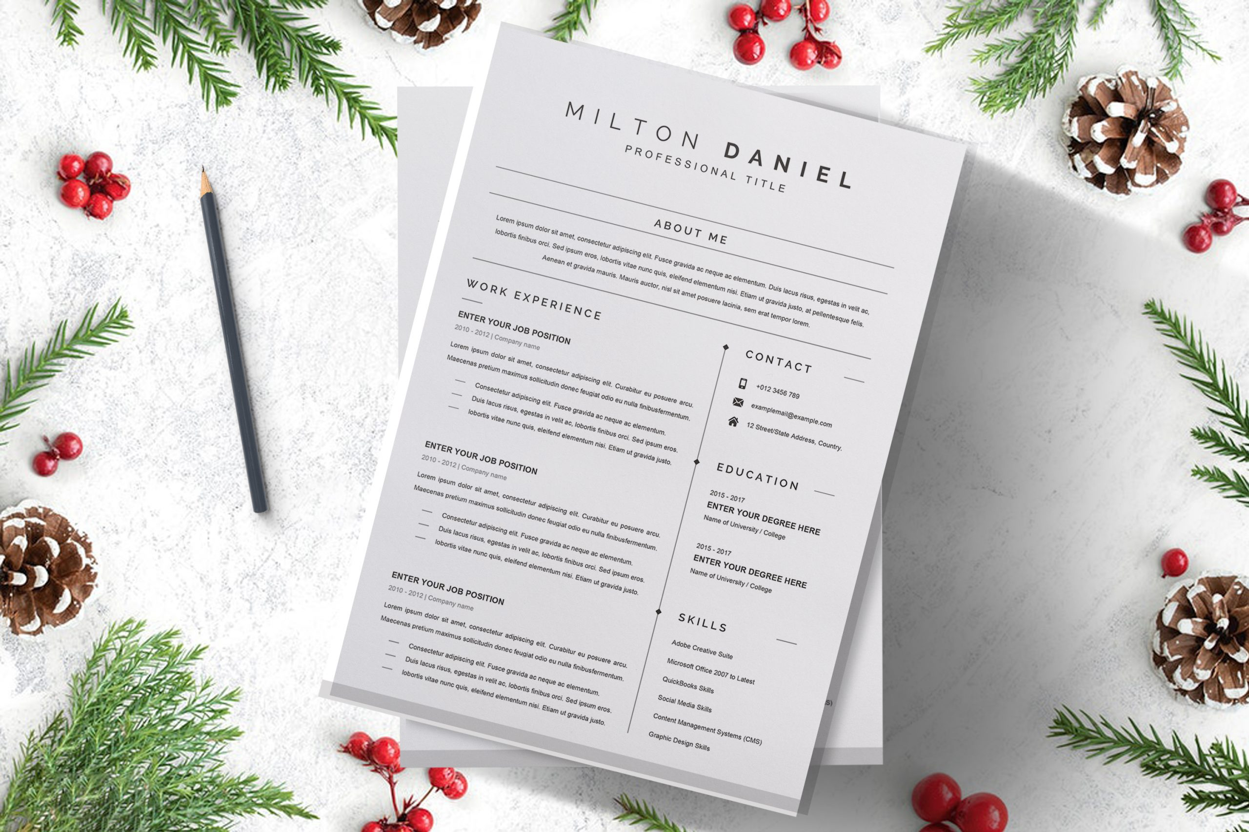 Professional-Word-CV-Template-in-Word-Format-4