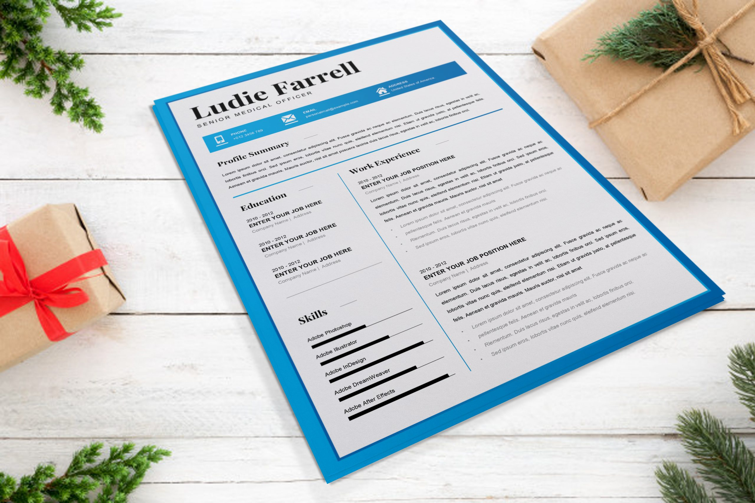 Senior-Medical-Officer-Resume-Template-to-download-2