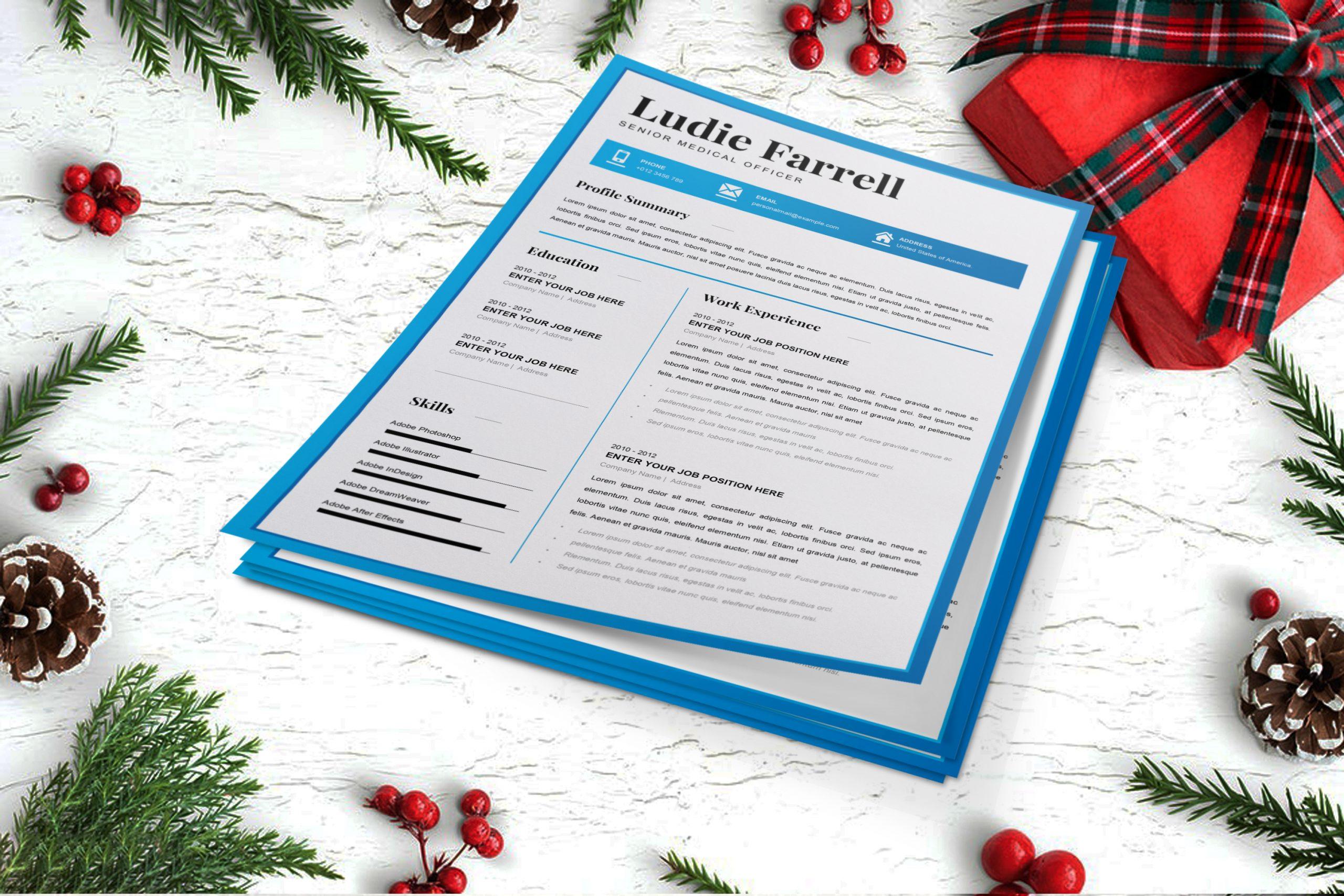 Senior-Medical-Officer-Resume-Template-to-download-3
