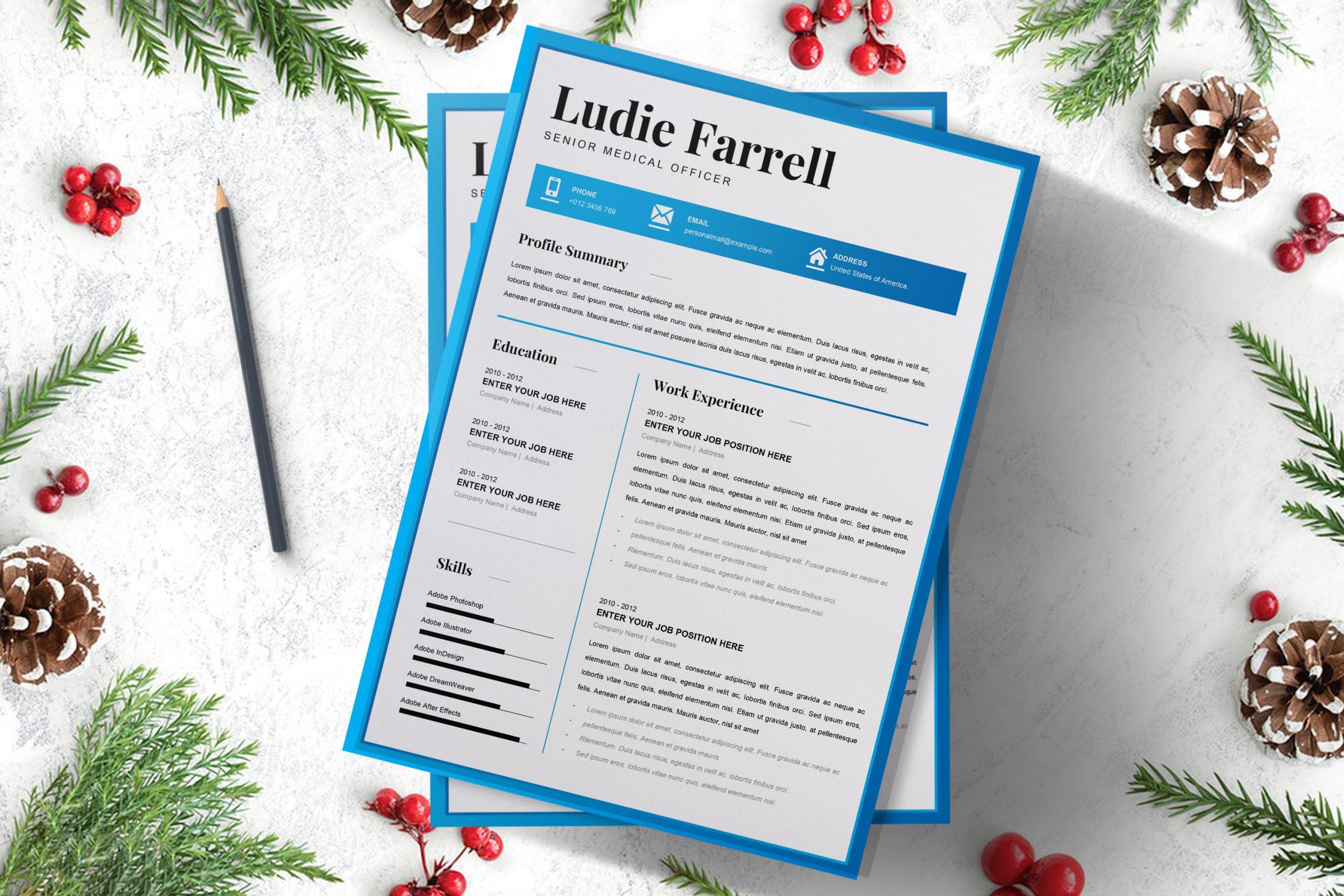 Senior-Medical-Officer-Resume-Template-to-download-4