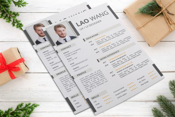 Creative Infographic Resume