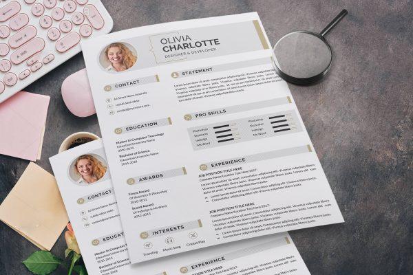 Resume Infographic Design