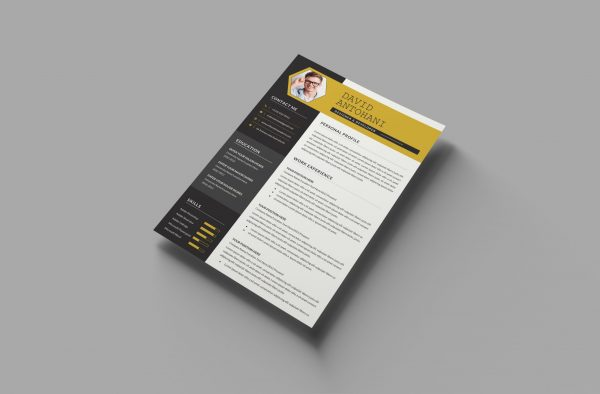 CV Template Word with Photo