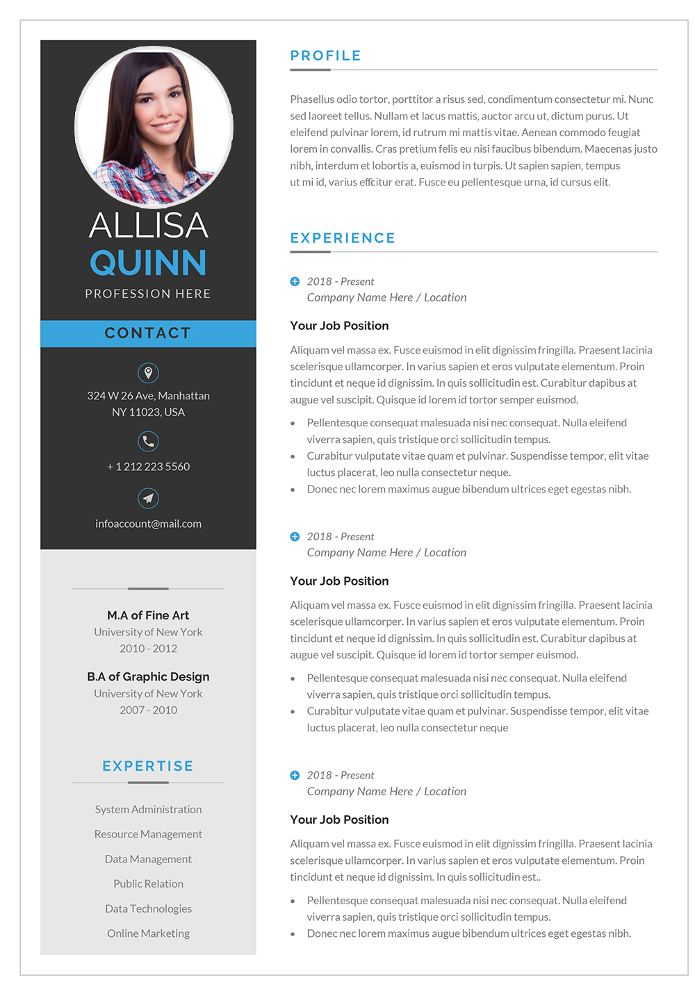 Novo Resume Template for 2021 to download Word format (DOC/DOCX)