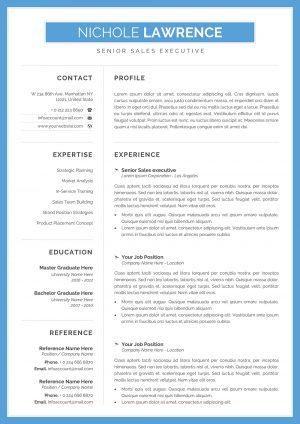 Online CV Example
