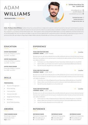 Organized CV Example