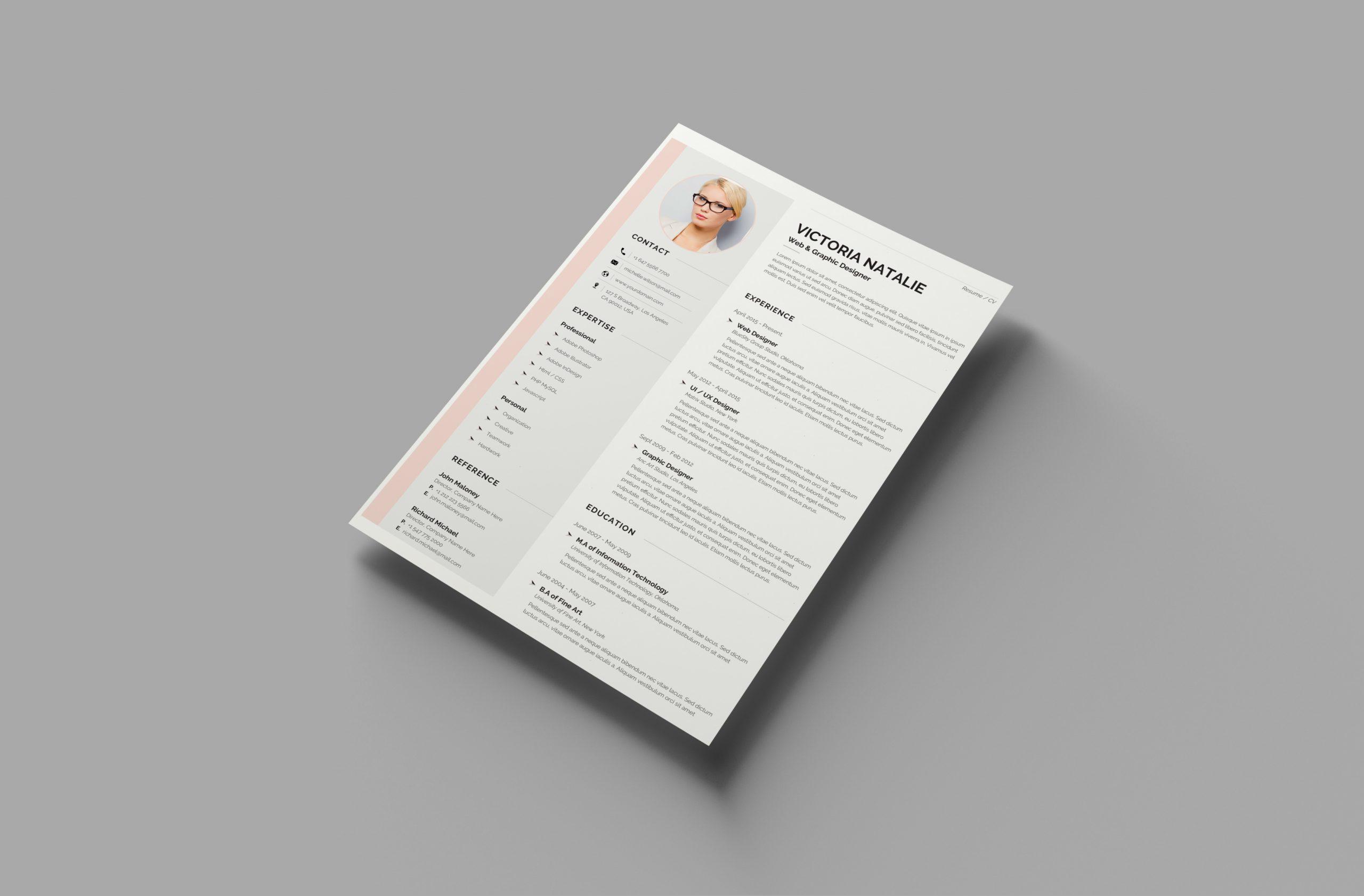 Professional CV format