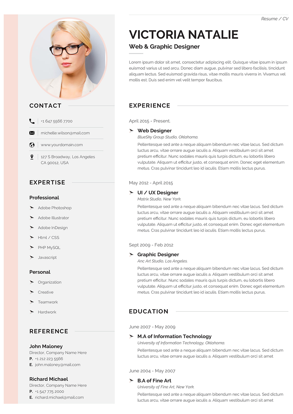 Professional CV Format Template to Download Word Format (doc/docx)
