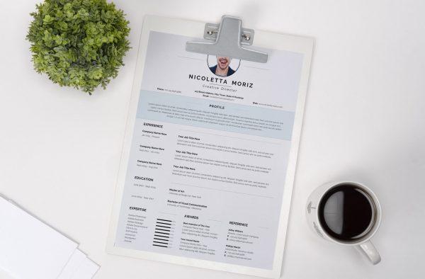 Swiss Style CV Template