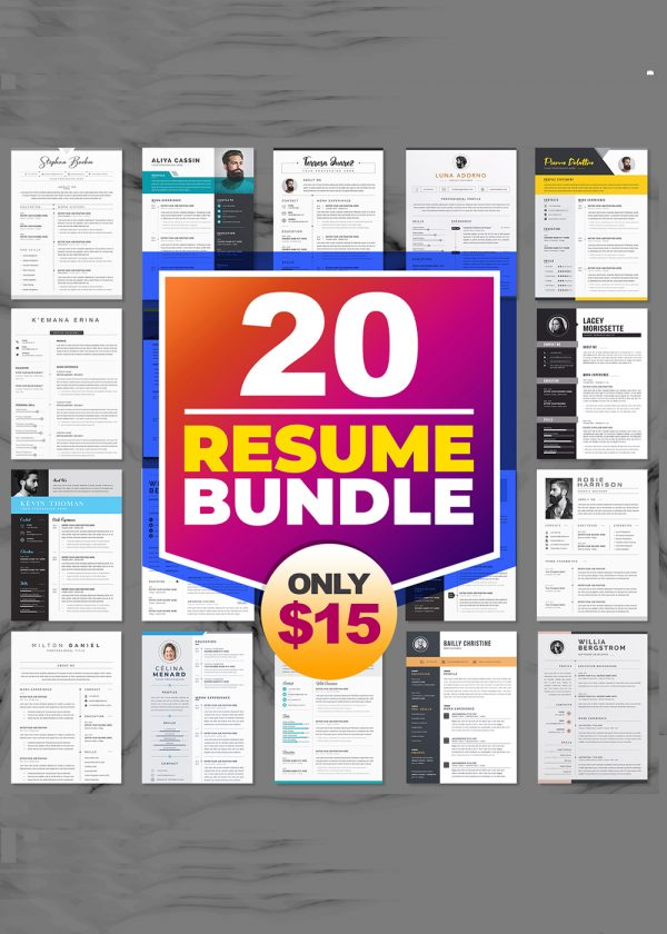 20 Resume CV Template Bundle Microsoft Word Format