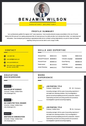 Clean Professional Word Resume