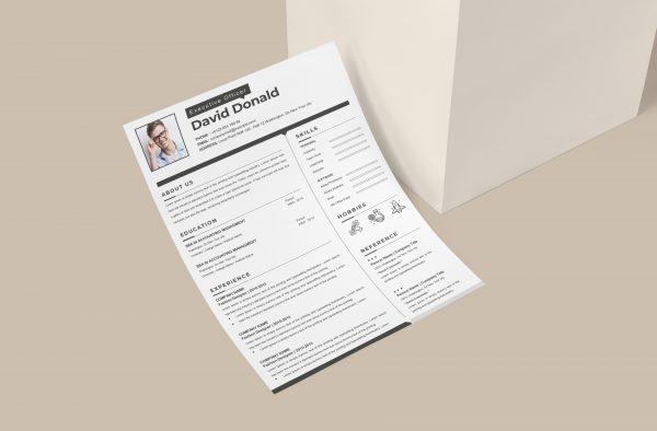 Modern Simple Resume Template