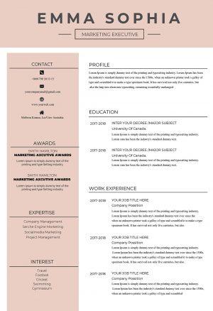Original and Creative CV Template