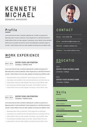 Perfect Original CV Template