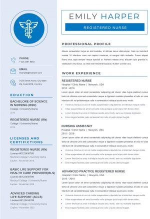 Professional CV Example