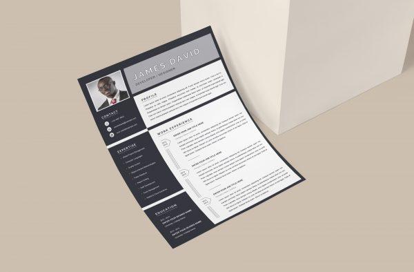 Resume Template Minimalist Style