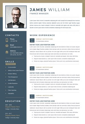 Resume Template to Download