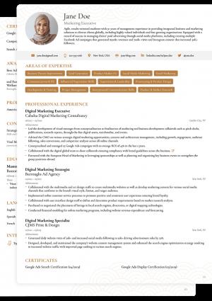 Word CV Novoresume Executive Template